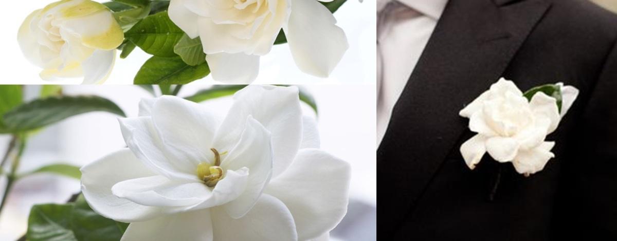 flores para bodas, flores para comuniones